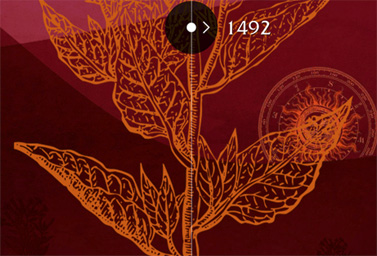 Web 375 aniversario